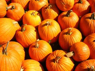 Pumpkin Pie by CeeEeeTee