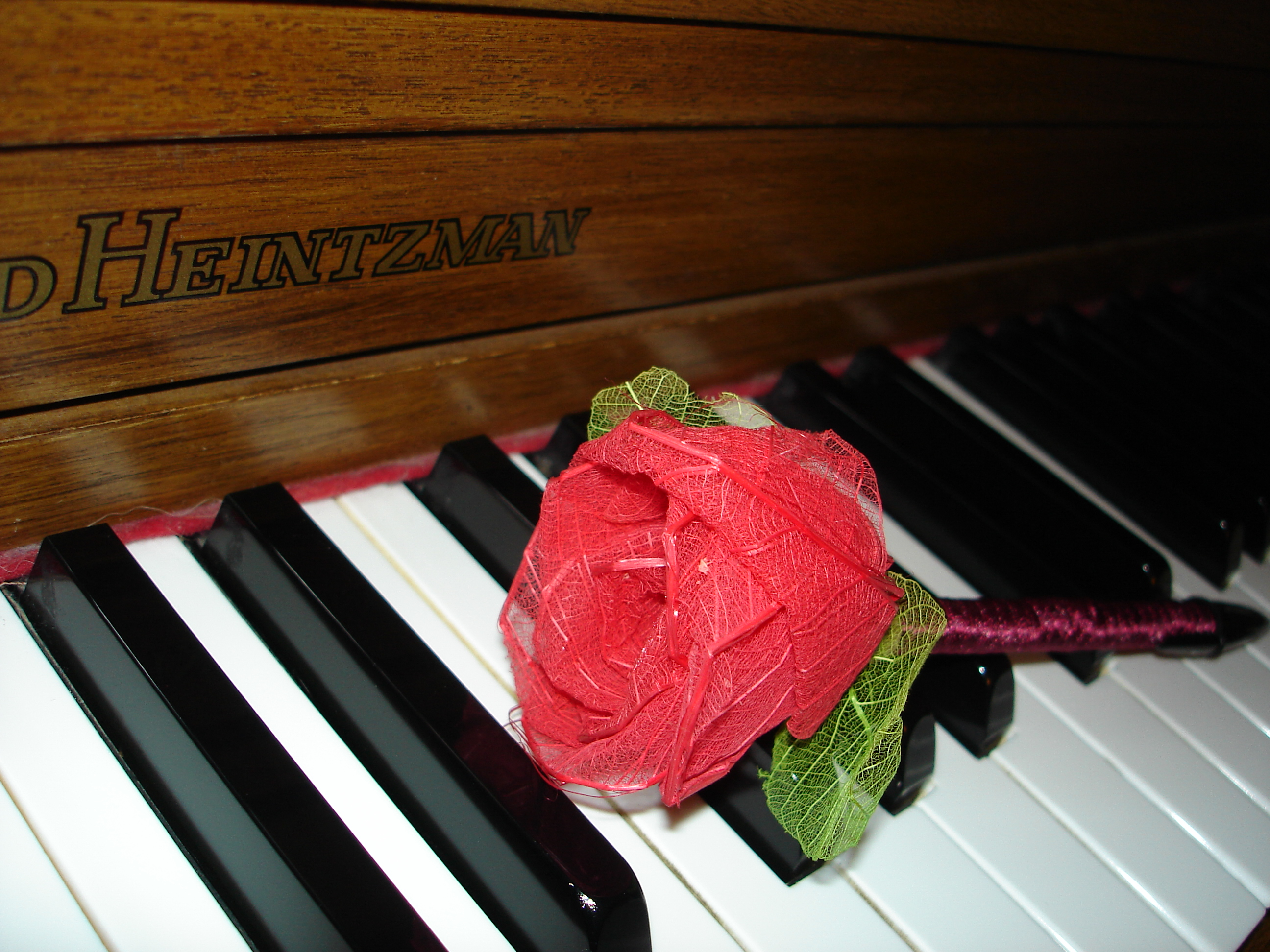 Solitary Rose On A Piano By Racehorse87 Stock On Deviantart