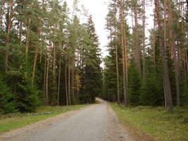 Estonian road by racehorse87-stock