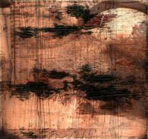 Colourful Shadows 6 by RicardoSleiman