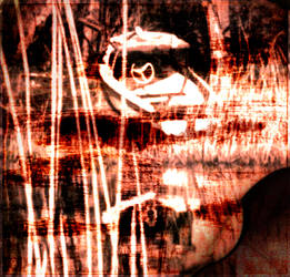 Colourful Shadows 10 by RicardoSleiman