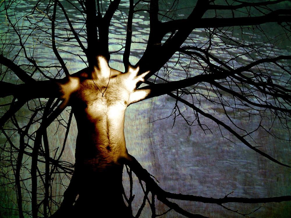 Treeman by RicardoSleiman