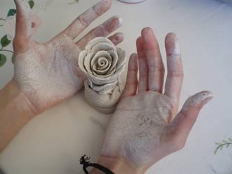 desert rose by vedhead