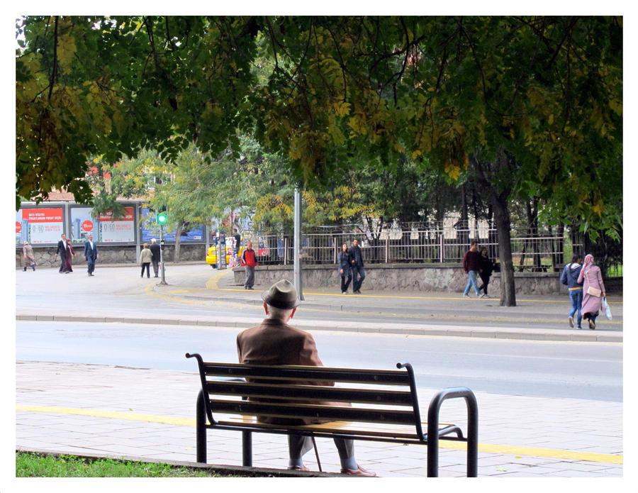 fall by ylajalik