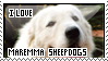 Maremma Sheepdog stamp by AniuProserpina