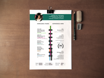 Psd resume template / CV template by celiah