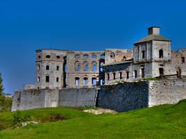Krzyztopor castle by krychu84