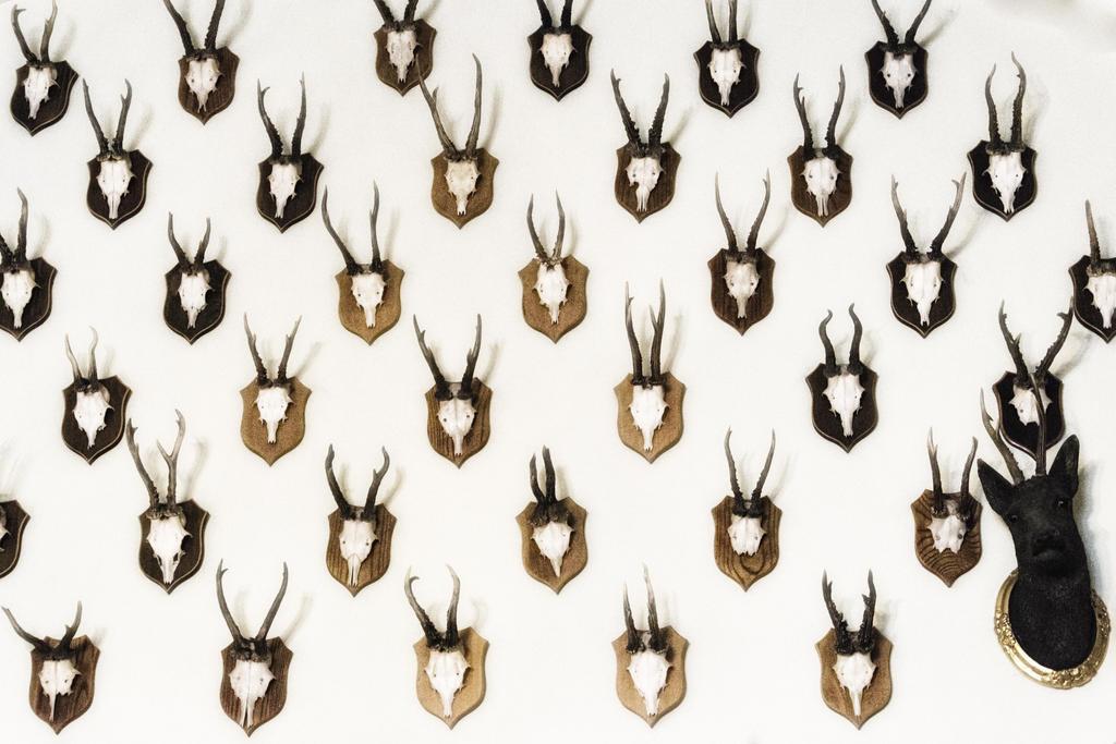 Deer's by krychu84