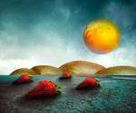 . . .  FruitScape . . .
