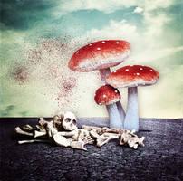 . . .  FungusFear . . . by ChIandra4U