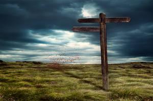 . . . Wrong way . . . by ChIandra4U