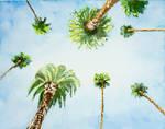 . . . Summer Dream . . .