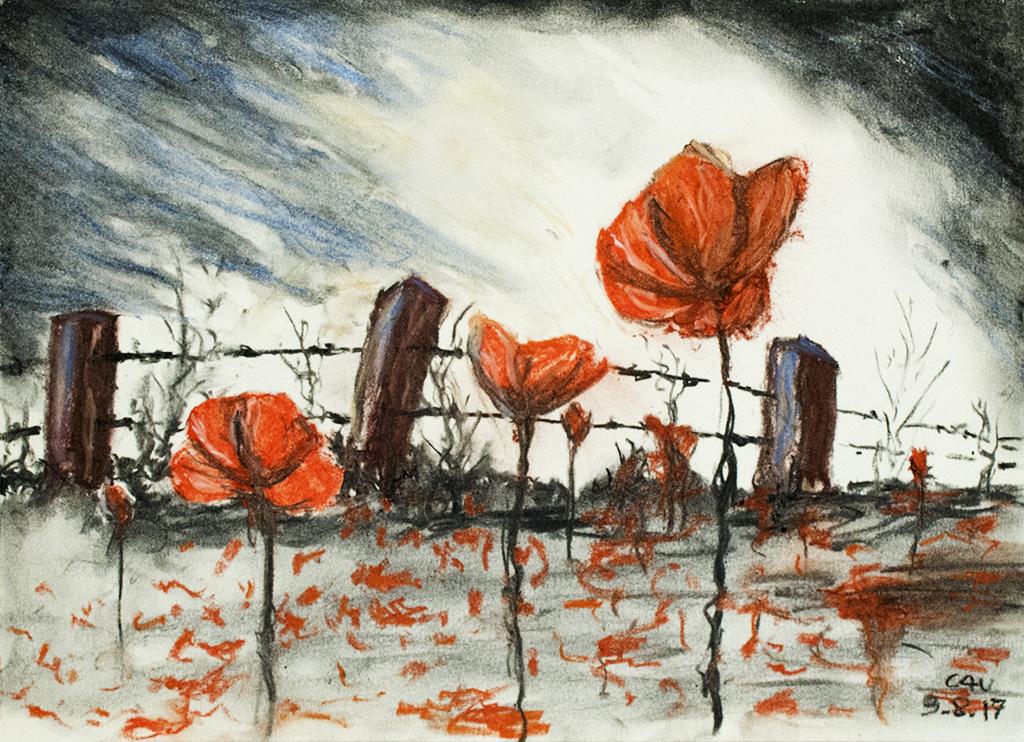 . . . In Flanders Fields . . .