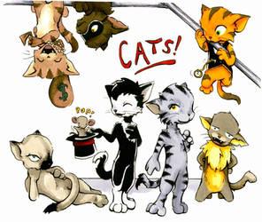 Cats by Mango-Elf