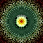 solstice flower by skulkey