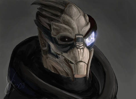 Mass Effect - Garrus by PhoenixFuryBane