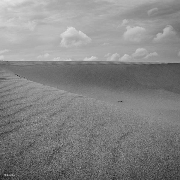 desert 1 by bhobie123