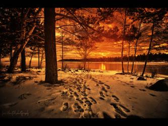 Burning Daylight by wchild