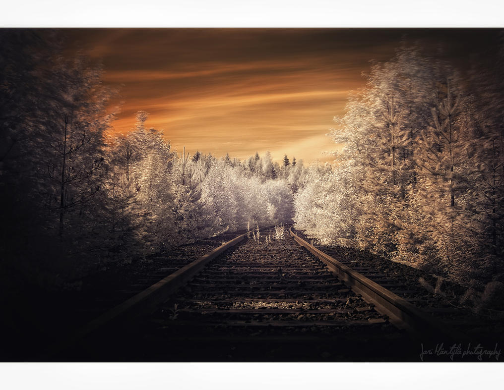 Amber Rails by wchild