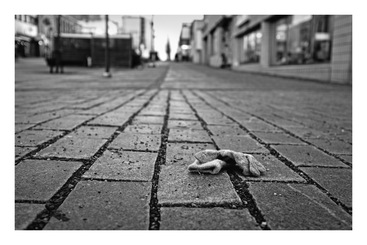 Sort of Roadkill, part III by wchild