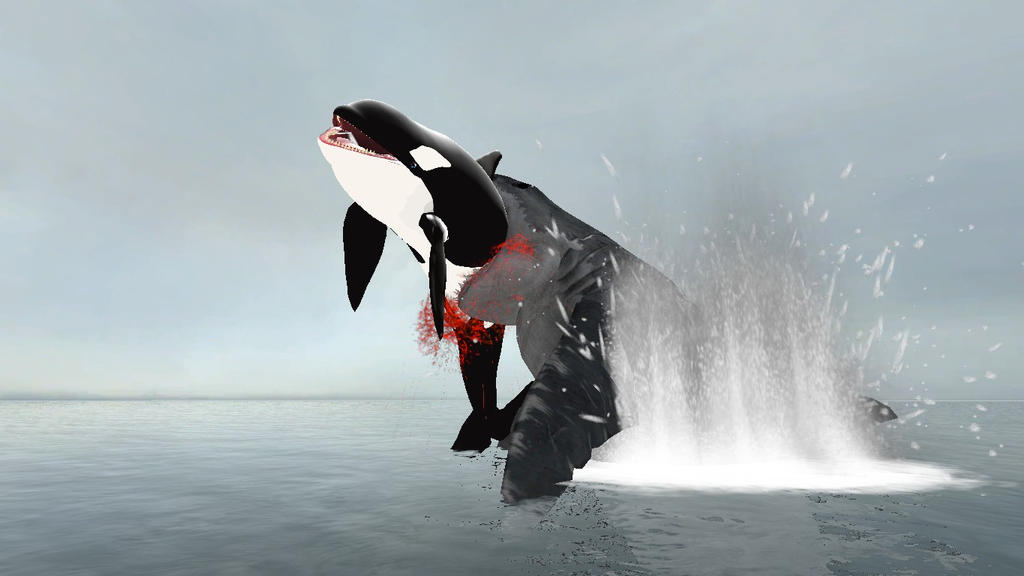 Megalodon eating Orca by CyotheLion on DeviantArt
