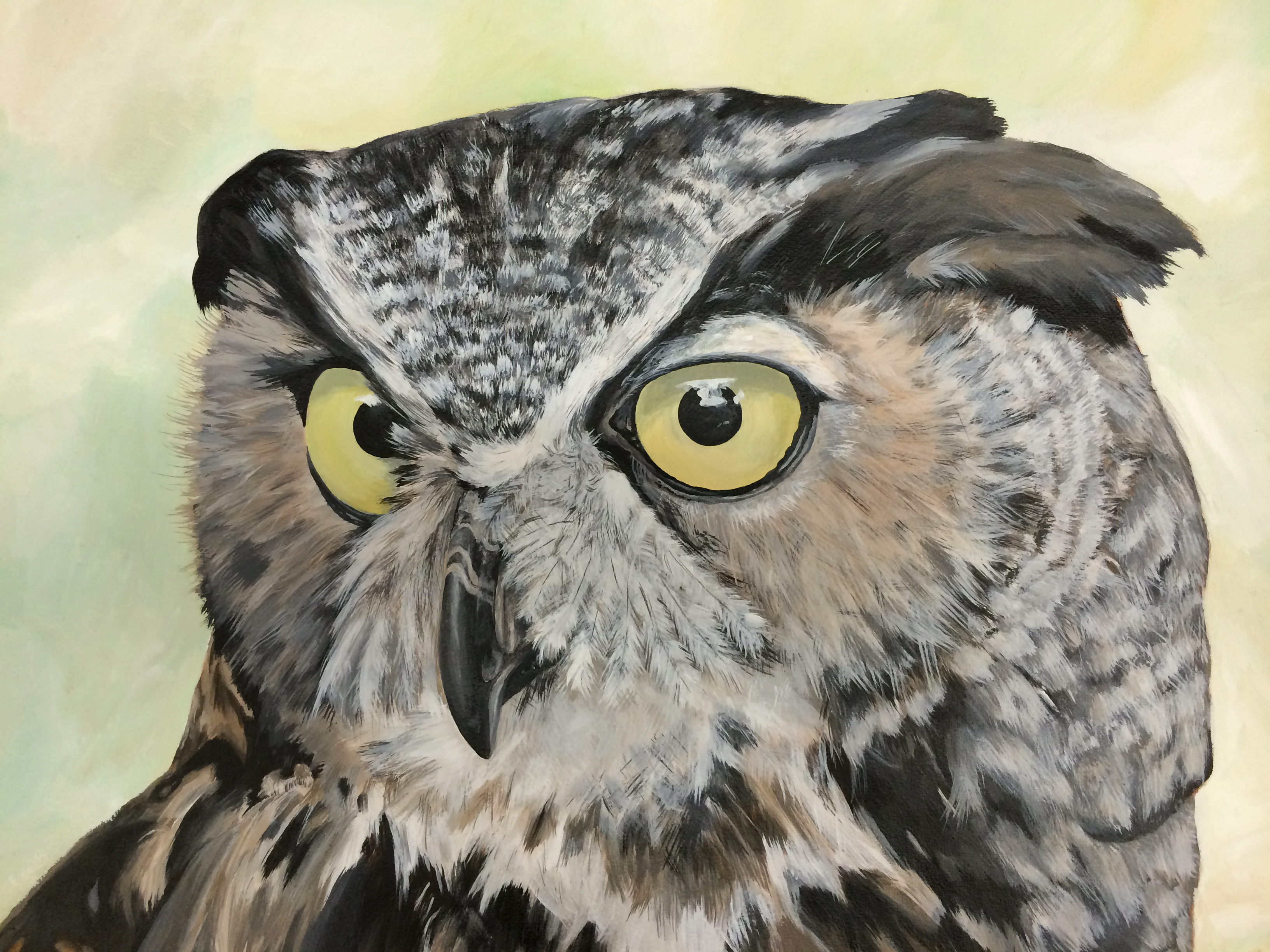 Owl by anneeeth on deviantart for What owls look like without feathers