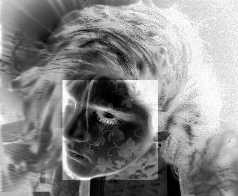 <img:http://fc01.deviantart.com/fs41/f/2009/027/7/d/Disjointed_explosion_by_Gpilot06.jpg>