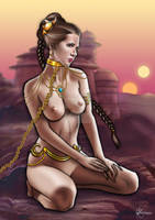 Princess Leia Commission (NSFW version) by PickyPepper
