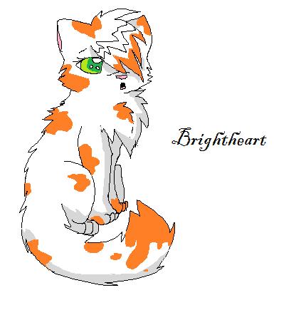 Brightpaw Warriors Brightpaw by TriaWolf