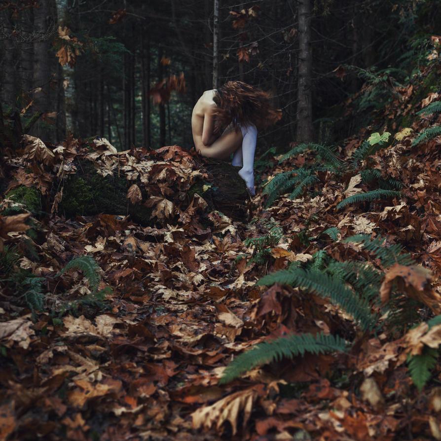 Autumn by TaraLundriganPhoto