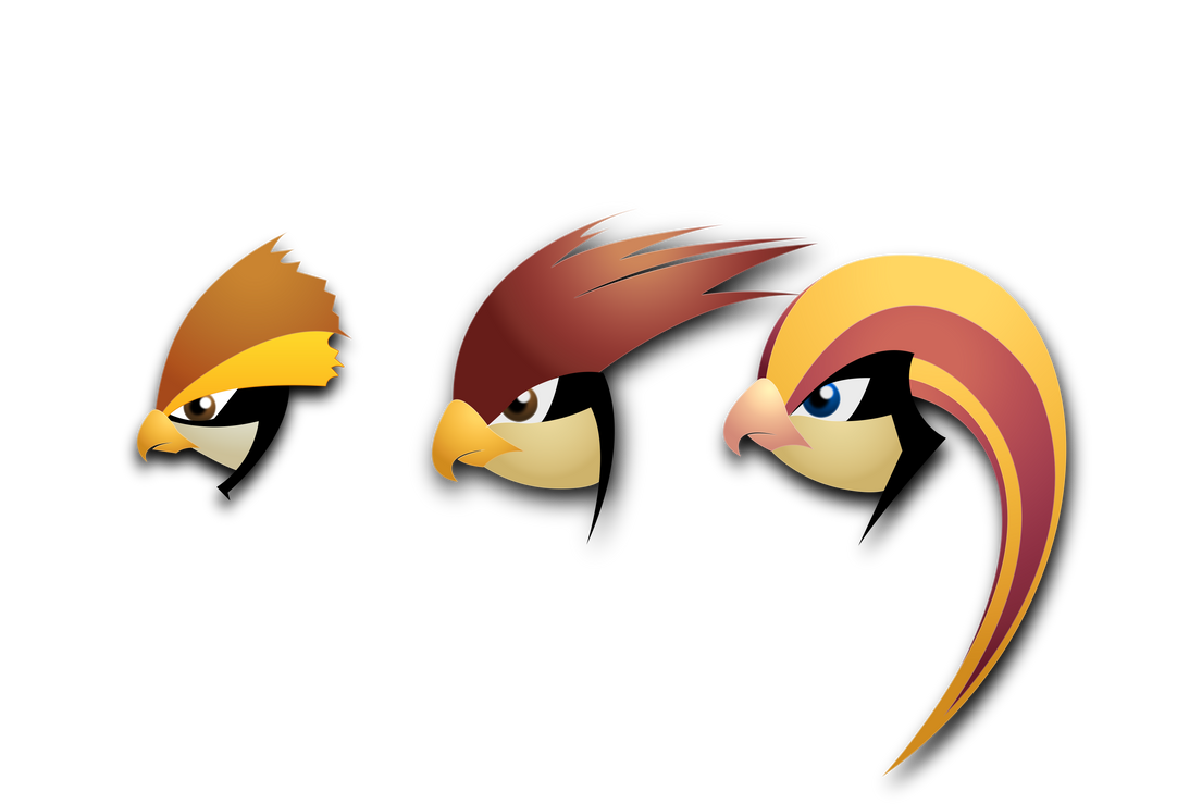 Pidgey Pidgeotto Pidgeot by darkheroic
