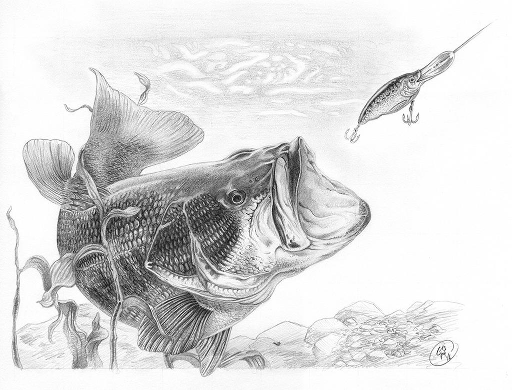 Largemouth bass sold by krishnacreative on deviantart for Fish scenery drawing