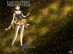Sailor Moon Dress-Up: Steel
