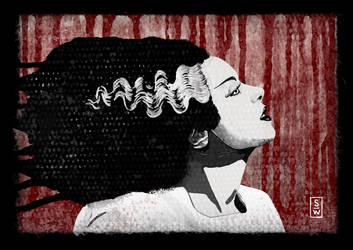 The Bride of Frankenstein by DocSW