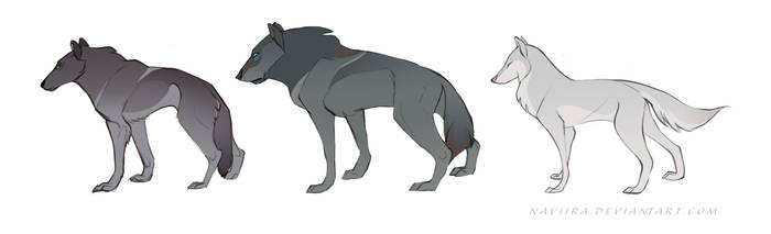 Wolf Concepts I by Naviira