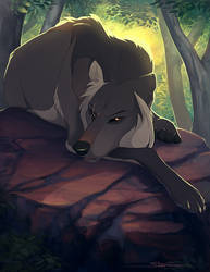 Don't Wake Me by Naviira