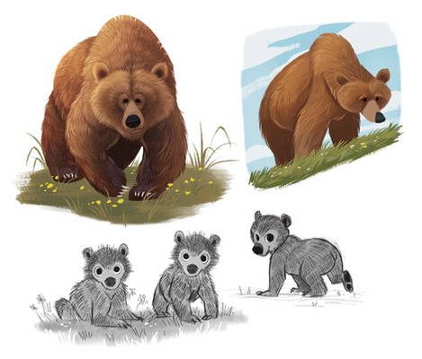 Bear Character Doodles