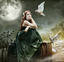 night hunting by Silvia15