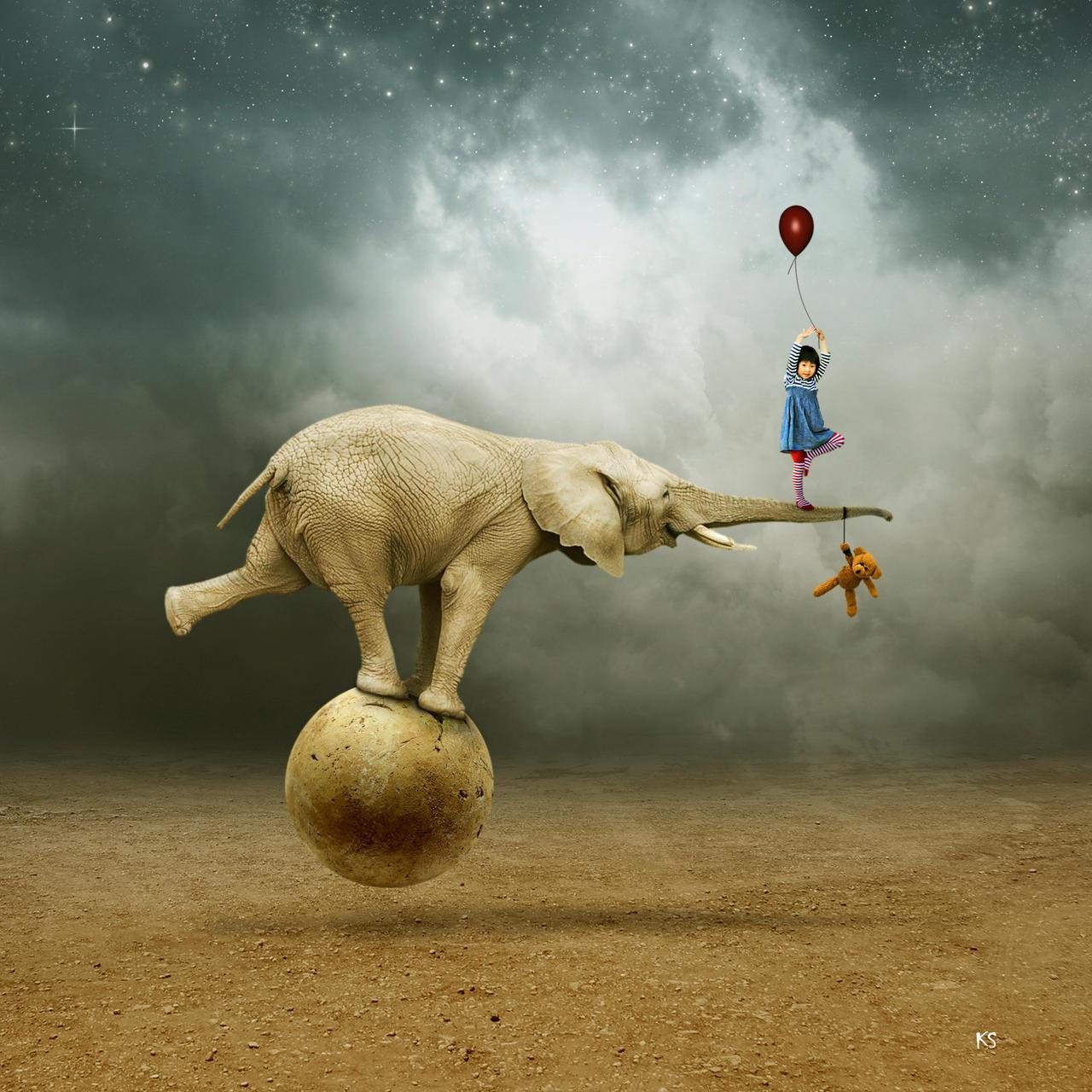Elephant by Silvia15