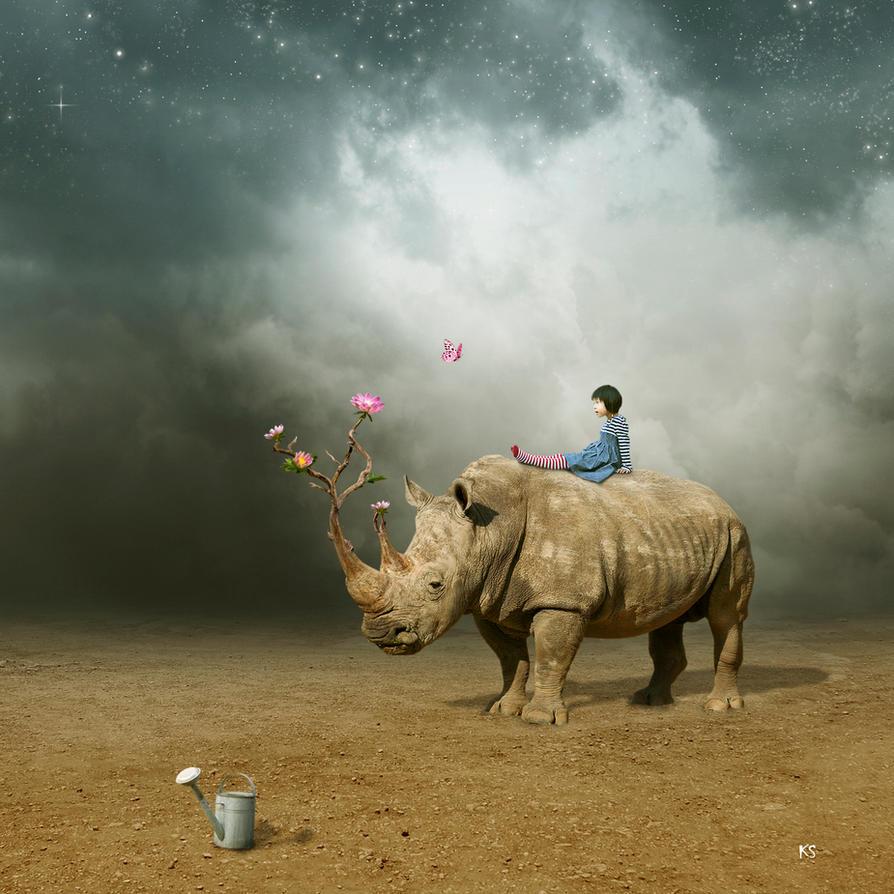 rhino by Silvia15