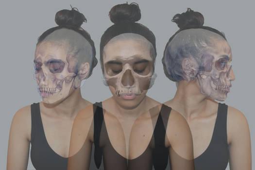 skulls transformation 2