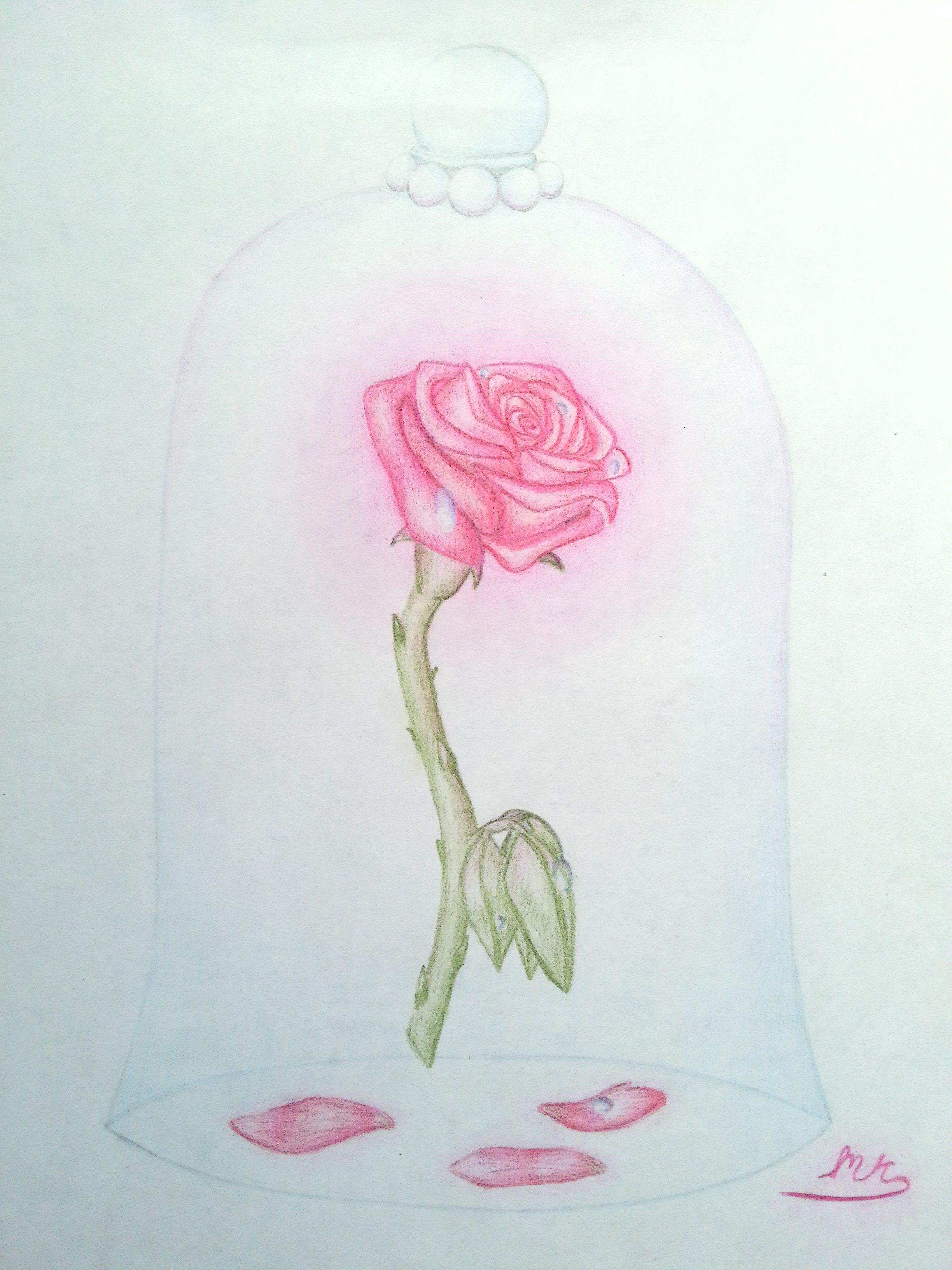 Pictures Of Beauty And The Beast Enchanted Rose Drawing Www