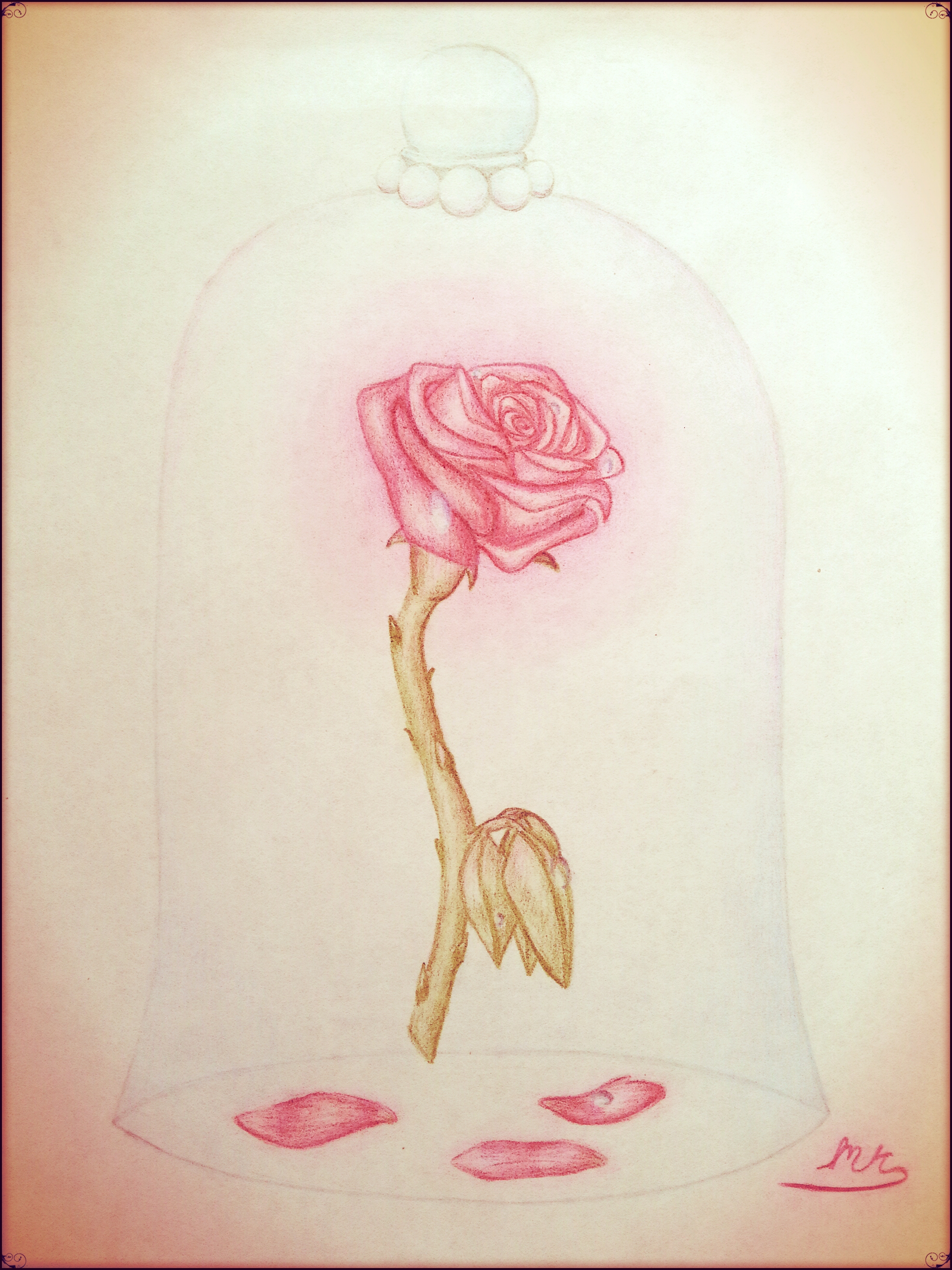 Edited Enchanted Rose