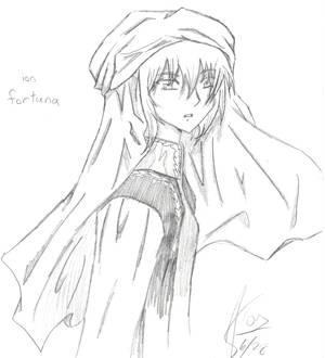 Ion sketch