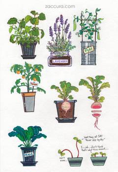 Zacky Plants | Sticker collection