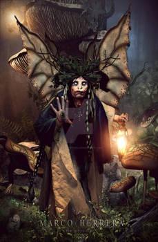 The Fairy Shaman