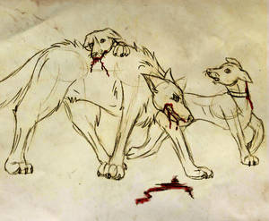Whippets and a Wolf