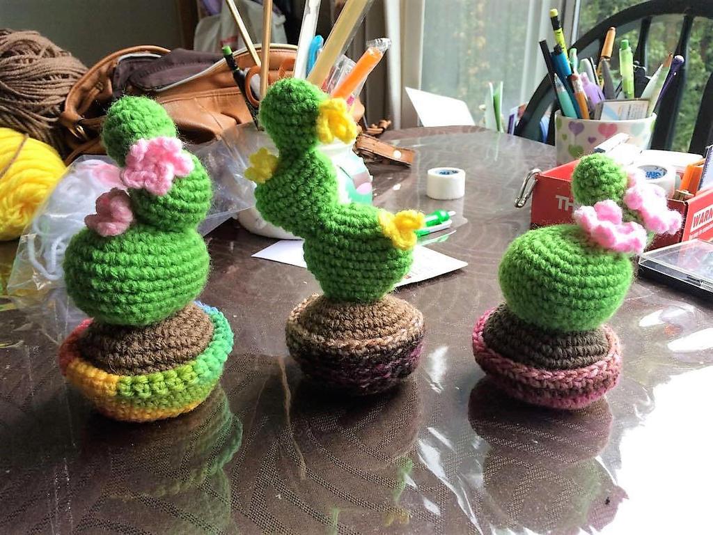 Cactus Family by uchihacrush