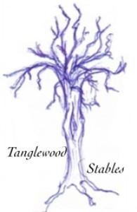 tangledwoods's Profile Picture