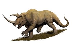 Komodo Rhino by MantisVerde
